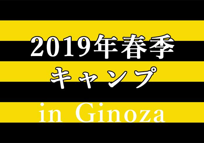 2019年阪神タイガース春季キャンプ in宜野座村